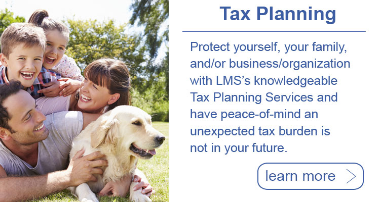 LMS Tax Planning Services